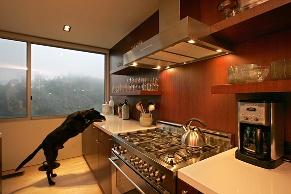 Pasinetti residence beverly hills by design plus for Modern kitchen designs 2009