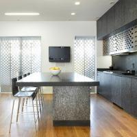 House_Kenig_Residence_08