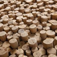 Pixels_Of_Pierced_Driftwood_02