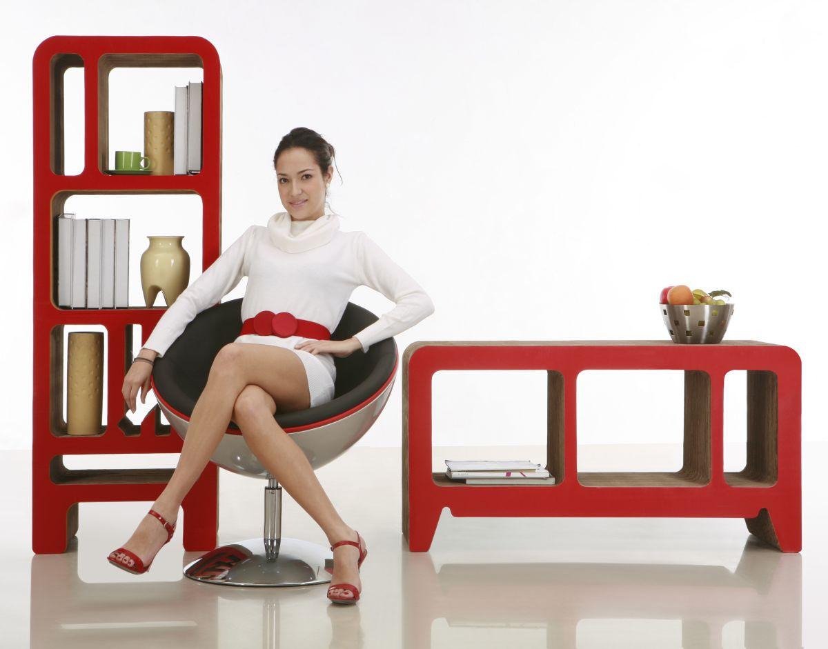 cardboard bookshelf and sideboard by reinhard dienes. Black Bedroom Furniture Sets. Home Design Ideas