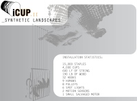 Icup_II_Synthetic_Landscape_02