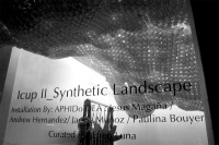 Icup_II_Synthetic_Landscape_23