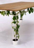 Plantable_01