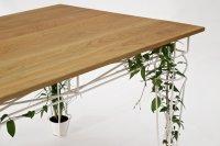 Plantable_05