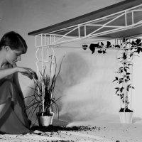Plantable_08