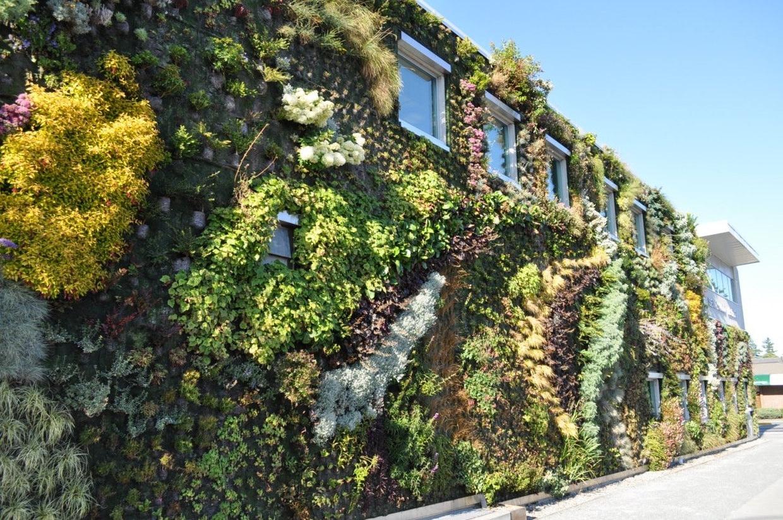 Semiahmoo Green Wall By Green Over Grey Karmatrendz