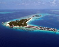 Coco_Palm_Bodu_Hithi_01