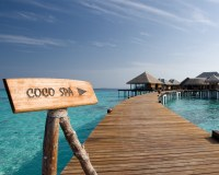 Coco_Palm_Bodu_Hithi_08