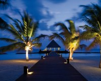 Coco_Palm_Bodu_Hithi_10