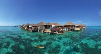 Coco_Palm_Bodu_Hithi_25