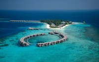 Coco_Palm_Bodu_Hithi_49