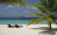 Coco_Palm_Bodu_Hithi_55