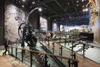 Natural_History_Museum_Utah_13