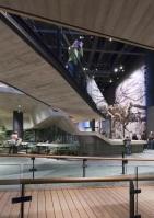 Natural_History_Museum_Utah_15