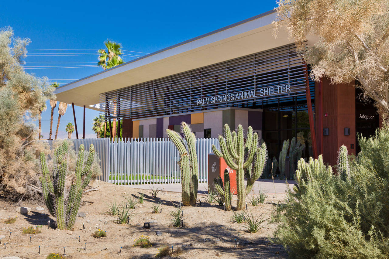Palm Springs Animal Care Facility By Swatt Miers Architects