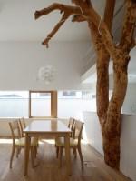 130304_Garden_Tree_House_14__r