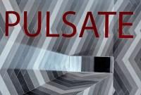130317_PuLSaTe_04