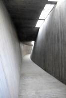 131103_Tree_Art_Museum_05__r