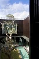 131211_Centennial_Tree_House_19__r