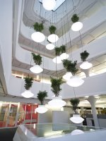 140503_Plant_and_Light_Installation_01