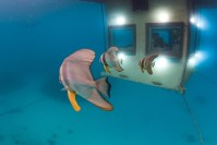 140809_The_Manta_Underwater_Room_09__r