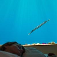 140809_The_Manta_Underwater_Room_10__r